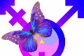 transgender symbol with butterfly
